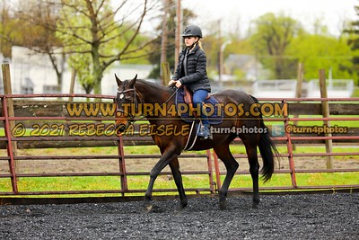Walk Trot Command  May8-_-3