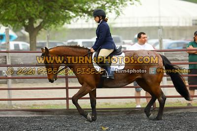 Beginner W T J equitation may 23--24