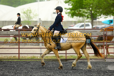 Beginner W T J equitation may 23--19
