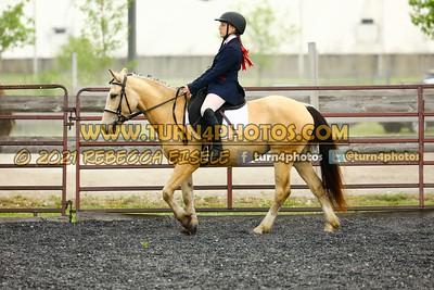 Beginner W T J equitation may 23--16