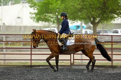Beginner W T J equitation may 23--25