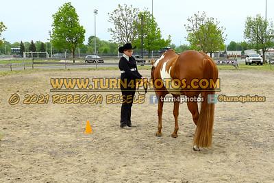Jr 12under  showmanship May23--9