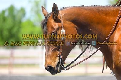 Jr 18 under equitation may 23--4