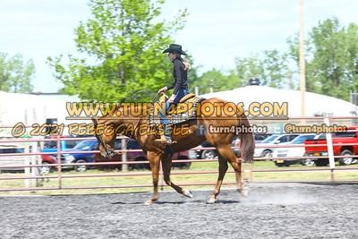 Jr Horse Sr Western pleasure  may 23--6