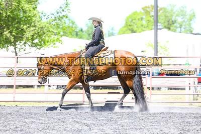 Jr Horse Sr Western pleasure  may 23--3