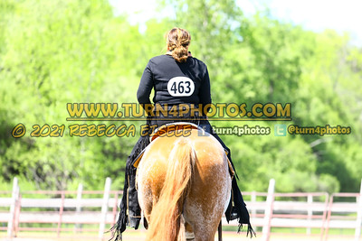 Jr Horse Sr Western pleasure  may 23--8