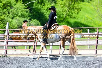 Jr Horse Sr Western pleasure  may 23-