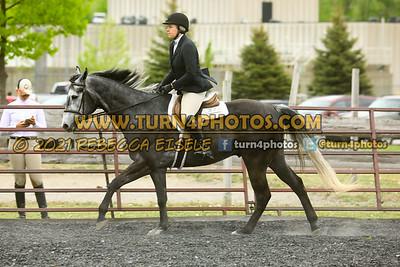 Jr Horse and Sr english pleasure may 23--10