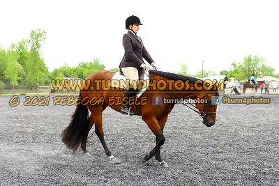 Jr Horse and Sr english pleasure may 23--16