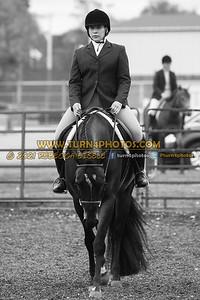 Jr Horse and Sr english pleasure may 23--13