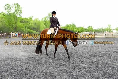 Jr Horse and Sr english pleasure may 23--14