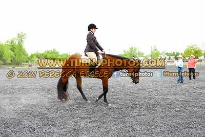 Jr Horse and Sr english pleasure may 23--17