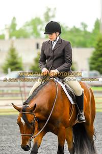 Jr Horse and Sr english pleasure may 23--19