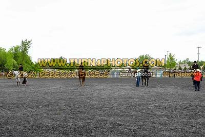 Jr Horse and Sr english pleasure may 23--22