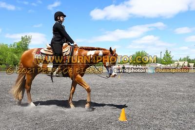 JR Western Horseman may 23--6