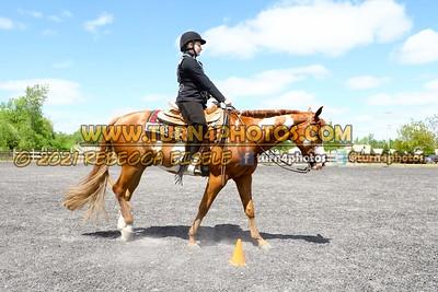JR Western Horseman may 23--7