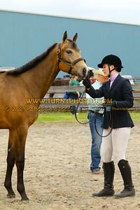 Jr Horse Halter May23--6