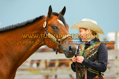 Jr Horse Halter May23--3