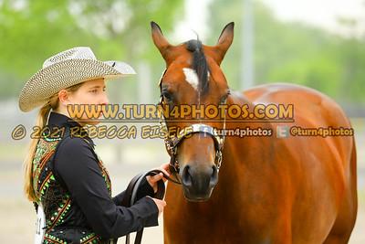 Jr Horse Halter May23-