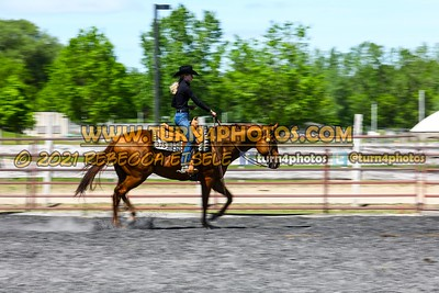 Open ranch horse may 23--19
