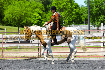 Open ranch horse may 23--12