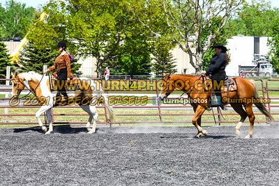 Open ranch horse may 23--3