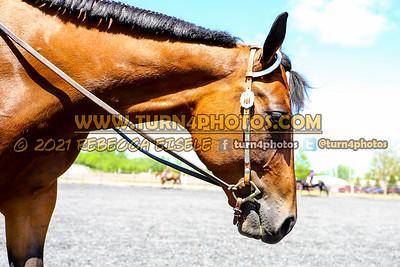 Sr western equitation may 23--22