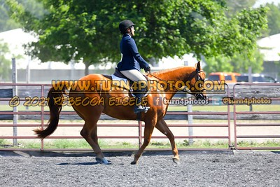 English Equitation  june 20--17