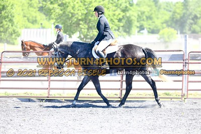 English Equitation  june 20--2