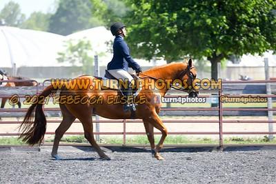 English Equitation  june 20--16
