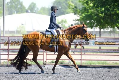 English Equitation  june 20--18