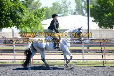 English Equitation  june 20--15