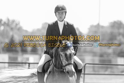 English Equitation  june 20--14