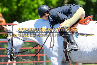 English Equitation  june 20--100