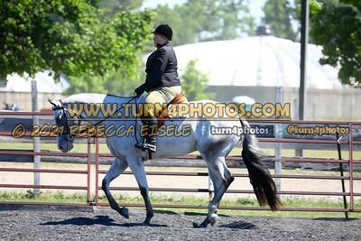 English Equitation  june 20--12