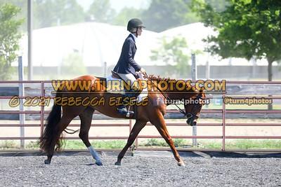 English Equitation  june 20--20