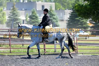 English Equitation  june 20--11