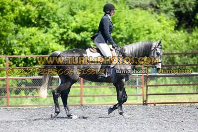 English Equitation  june 20--21