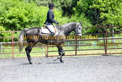 English Equitation  june 20--22