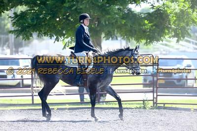 English Equitation  june 20--13