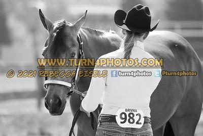 jr horse halter june 20--4