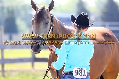 jr horse halter june 20--5