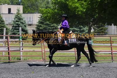 western equitation june 20--18