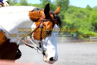 western equitation june 20--2