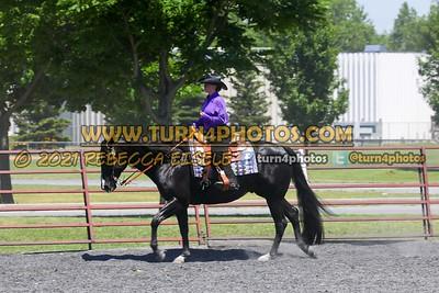 western equitation june 20--17