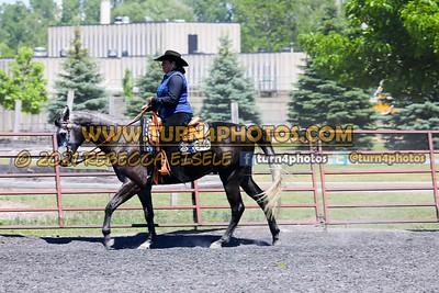 western equitation june 20--15