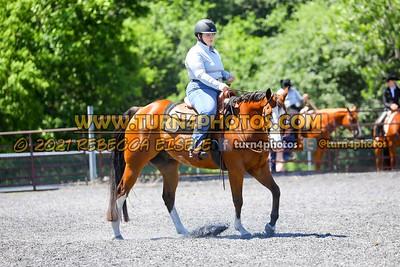 western horsemanship june 20--100