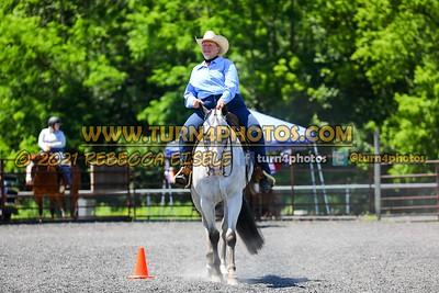 western horsemanship june 20--2