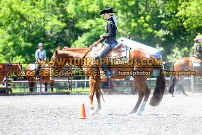 western horsemanship june 20--19