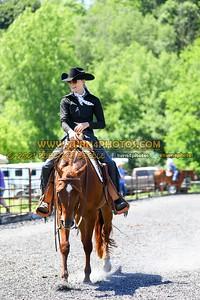 western horsemanship june 20--22